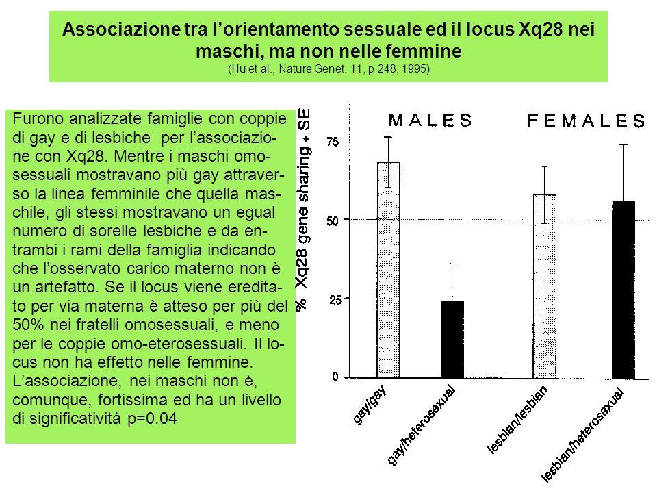 Associazione tra l'orientamento sessuale ed il locus Xq28 nei maschi, ma non nelle femmine (Hu et al., Nature Genet. 11, p 248, 1995)