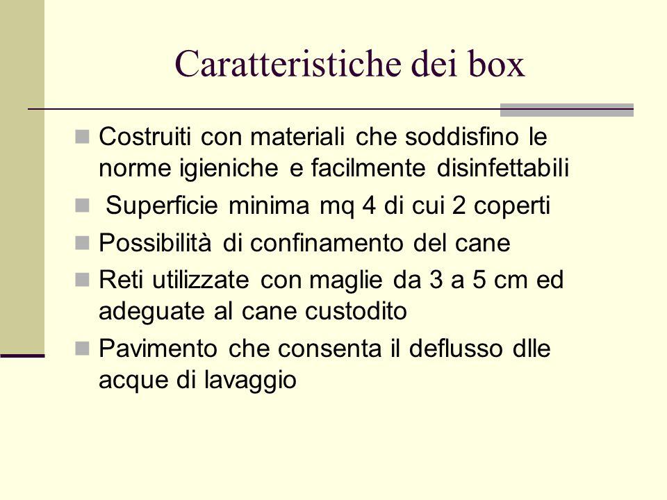 Caratteristiche dei box
