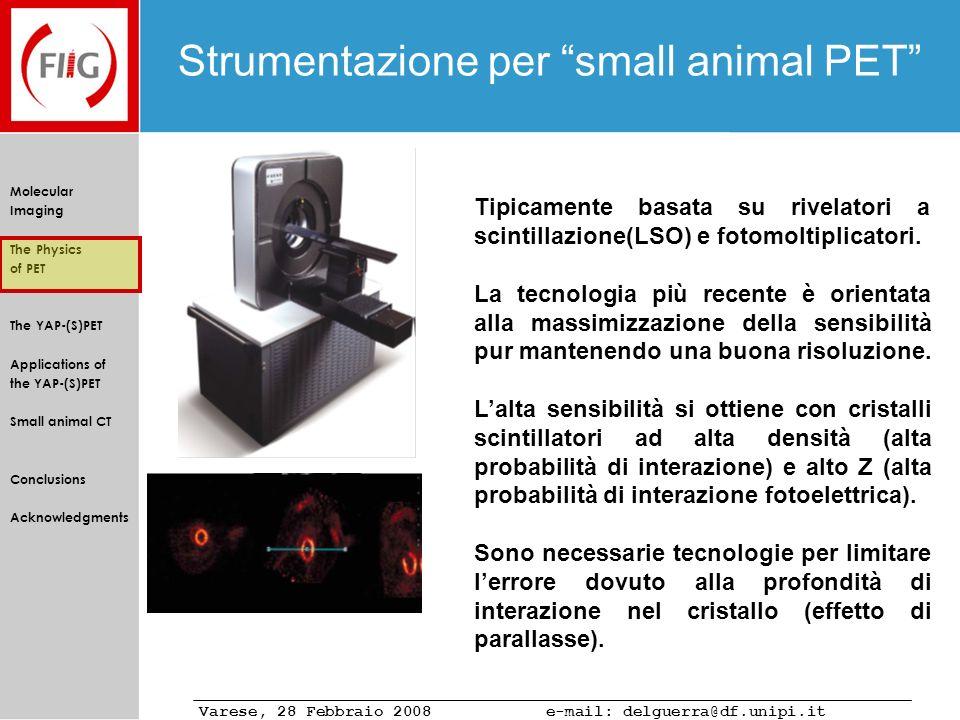 Strumentazione per small animal PET