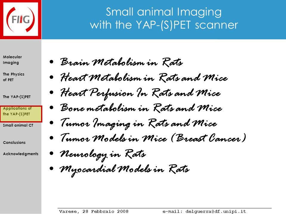 Small animal Imaging with the YAP-(S)PET scanner