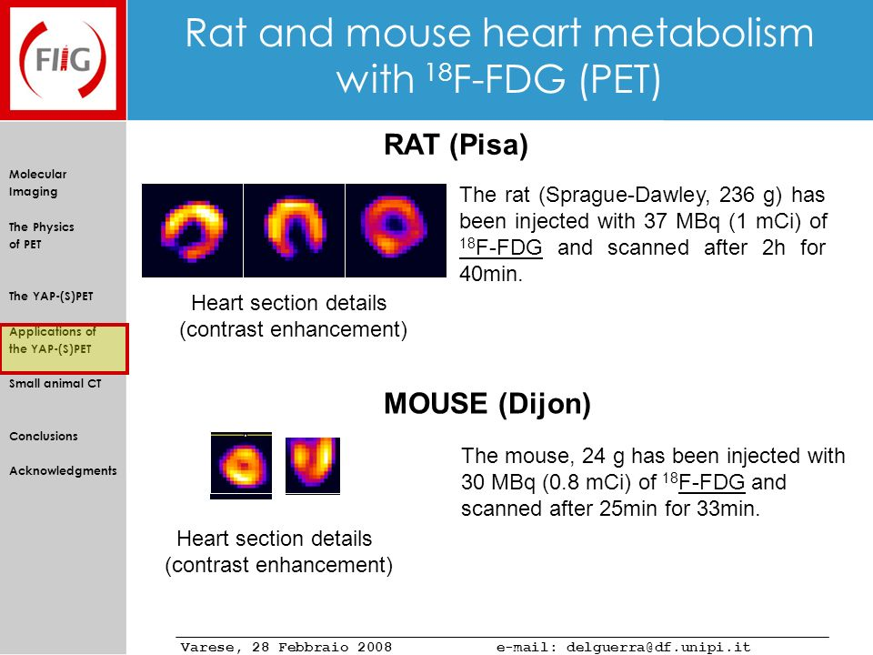 Rat and mouse heart metabolism with 18F-FDG (PET)
