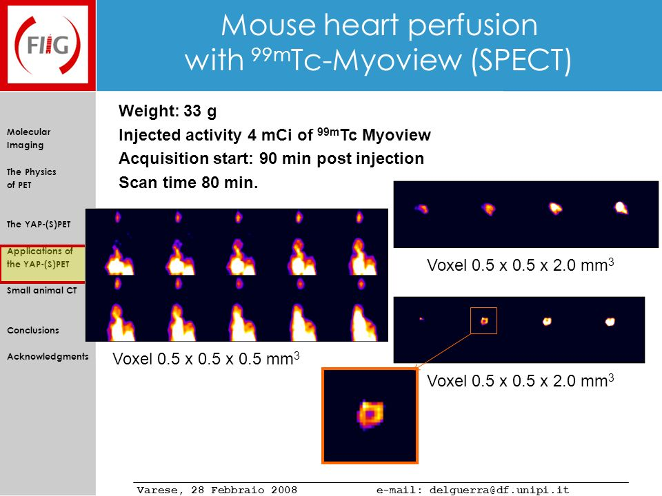 Mouse heart perfusion with 99mTc-Myoview (SPECT)