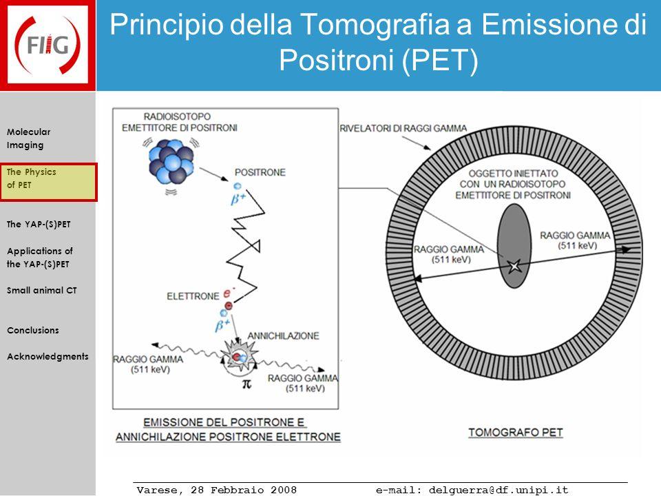 Principio della Tomografia a Emissione di Positroni (PET)