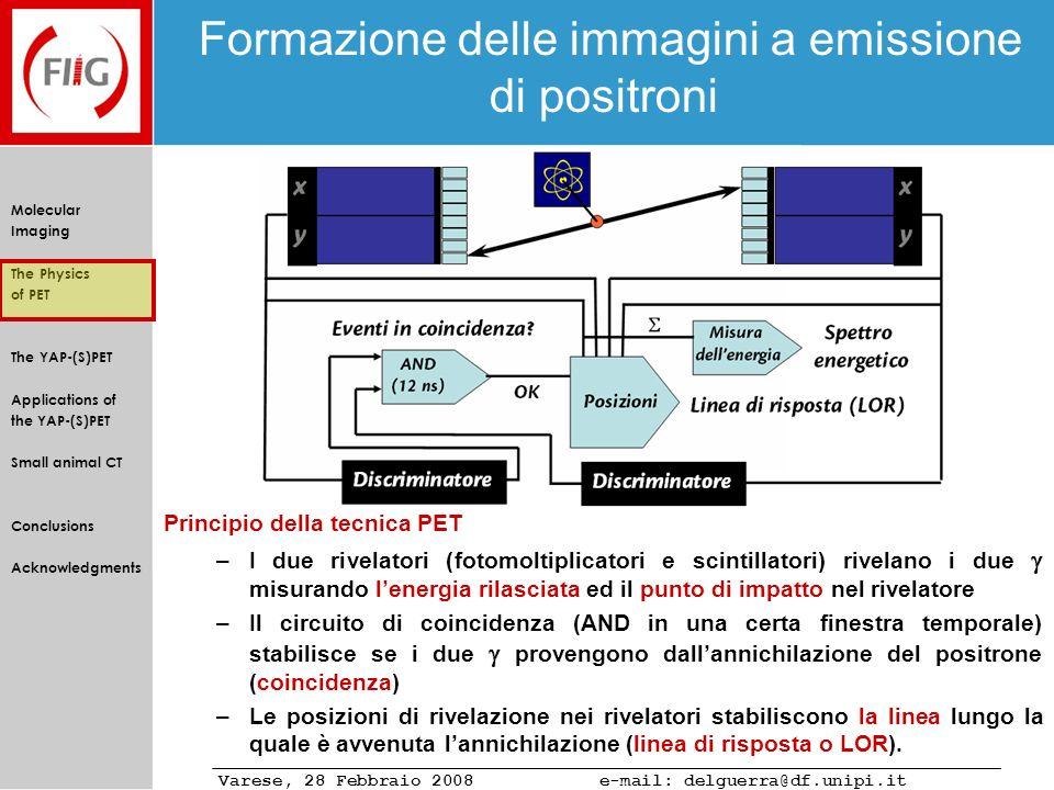 Formazione delle immagini a emissione di positroni