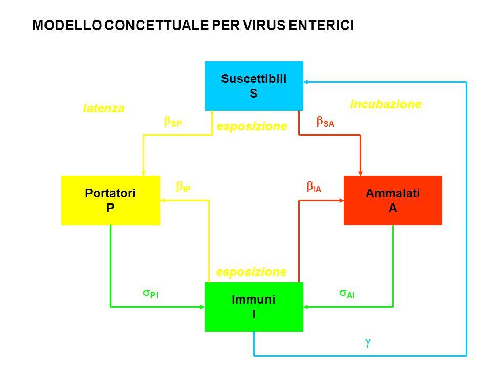 MODELLO CONCETTUALE PER VIRUS ENTERICI