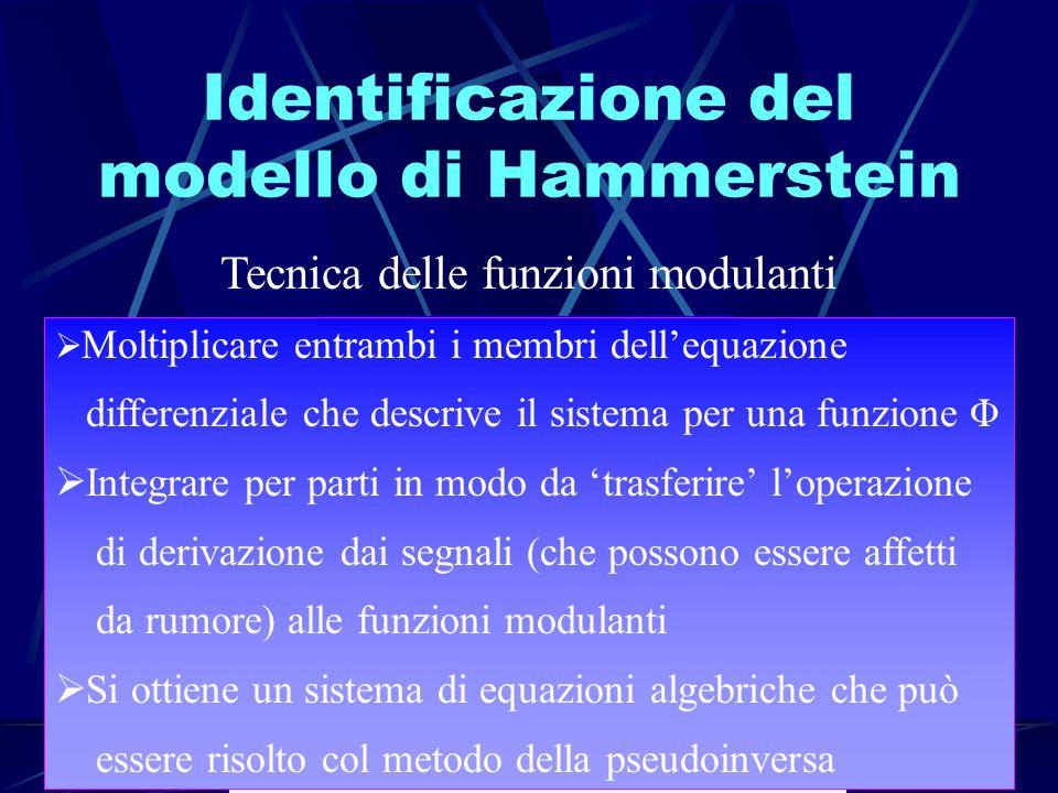 Identificazione del modello di Hammerstein