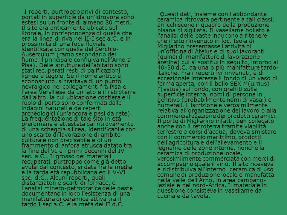 I reperti, purtroppo privi di contesto, portati in superficie da un idrovora sono estesi su un fronte di almeno 80 metri. Il sito era anticamente ubicato sul litorale, in corrispondenza di quella che era la linea di riva nel II-I sec a.C. e in prossimità di una foce fluviale identificata con quella del Serchio-Auserculum (ramo secondario del fiume:il principale confluiva nell Arno a Pisa). Delle strutture dell abitato sono stati recuperati resti di palificazioni lignee e tegole. Se il nome antico è sconosciuto, si trattava di un punto nevralgico nei collegamenti fra Pisa e l area Versiliese da un lato e il retroterra dall altro, la cui ubicazione costiera e il ruolo di porto sono confermati dalle indagini naturali e da reperti archeologici (un ancora e pesi da rete). La frequentazione di tale sito in età preromana è attestata dal ritrovamento di una scheggia silicea, identificabile con uno scarto di lavorazione di ambito culturale non precisabile e di un frammento di anfora etrusca datato tra la fine del VI e i primi decenni del IV sec. a.C.. Il grosso dei materiali recuperati, purtroppo come già detto avulsi dal contesto, si data fra la media e la tarda età repubblicana ed il V-VI sec. d.C.. Alcuni reperti, quali distanziatori e scarti di fornace, e l analisi minero-petrografica delle paste documentano in loco l esistenza di una manifattura di ceramica attiva tra il tardo I sec a.C. e la metà del II d.C.