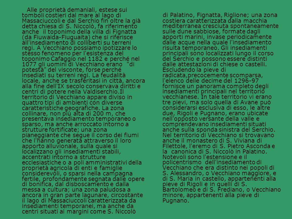 Alle proprietà demaniali, estese sui tomboli costieri dal mare al lago di Massaciuccoli e dal Serchio fin oltre la già detta chiesa di S. Niccolò, fa riferimento anche il toponimo della villa di Fignatta (da Fiuwaida-Fiuguaita) che si riferisce all insediamento di colliberti su terreni regi. A Vecchiano possiamo ipotizzare lo stesso fenomeno per l esistenza del toponimo Cafaggio nel 1182 e perché nel 1077 gli uomini di Vecchiano erano di potestà del visconte, forse perché insediati su terreni regi. La feudalità locale, anche se trasferitasi in città, ancora alla fine dell IX secolo conservava diritti e centri di potere nella Valdiserchio.Il territorio di Vecchiano appare diviso in quattro tipi di ambienti con diverse caratteristiche geografiche. La zona collinare, non più alta di 200 m, che presentava insediamento temporaneo o sparso, ma anche arroccato intorno a strutture fortificate; una zona pianeggiante che segue il corso dei fiumi che l hanno generata attraverso il loro apporto alluvionale, sulla quale si localizzano gli insediamenti stabili, accentrati intorno a strutture ecclesiastiche o a poli amministrativi della proprietà agricola di enti e famiglie considerevoli, o sparsi nella campagna fertile, profondamente segnata dalle opere di bonifica, dal disboscamento e dalla messa a cultura; una zona paludosa a ancora in gran parte lagunare, circostante il lago di Massaciuccoli caratterizzata da insediamenti temporanei, ma anche da centri situati ai margini come S. Niccolò
