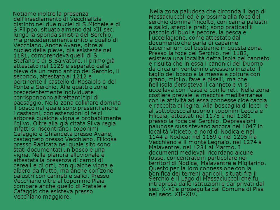 Nella zona paludosa che circonda il lago di Massaciuccoli ed è prossima alla foce del serchio domina l incolto, con canna palustri e salici, sterpi e prati; sono praticati il pascolo di buoi e pecore, la pesca e l uccellagione, come attestato dal documento che parla di capanne tabernarium col bestiame in questa zona. Presso la foce del Serchio, nel 1182, esisteva una località detta Isola del canneto e risulta che in essa i canonici del Duomo da circa un ventennio avessero iniziato il taglio del bosco e la messa a coltura con grano, miglio, fave e piselli, ma che nell isola persisteva il canneto e vi si uccellava con l esca e con le reti. Nella zona costiera prevale la macchia mediterranea con le attività ad essa connesse cioè caccia e raccolta di legna. Alla boscaglia di lecci e al sottobosco alludono i toponimi Leccia e Filicaia, attestati nel 1175 e nel 1381 presso la foce del Serchio. Depressioni paludose sussistevano ancora nel 1047 in località Viticeto, a nord di Nodica e nel 1144 a Nodica; nel 1159 e nel 1205 fra Vecchiano e il monte Legnaio, nel 1274 a Malaventre, nel 1231 al Marmo. I documenti medievali ricordano alcune fosse, concentrate in particolare nei territori di Nodica, Malaventre e Migliarino. Questo per la loro connessione con la bonifica dei terreni agricoli, situati fra il Serchio e il Lago di Massaciuccoli che fu intrapresa dalle istituzioni e dai privati dal sec. X-XI e proseguita dal Comune di Pisa nei secc. XII-XIV.