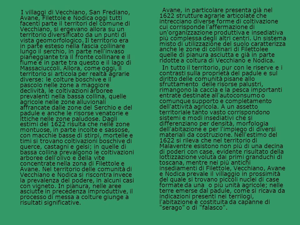 Avane, in particolare presenta già nel 1622 strutture agrarie articolate che intrecciano diverse forme di coltivazione cui corrisponde l affermazione di un organizzazione produttiva e insediativa più complessa degli altri centri. Un sistema misto di utilizzazione del suolo caratterizza anche le zone di collinari di Filettolee quelle di pianura asciutta e già in parte ridotte a coltura di Vecchiano e Nodica.