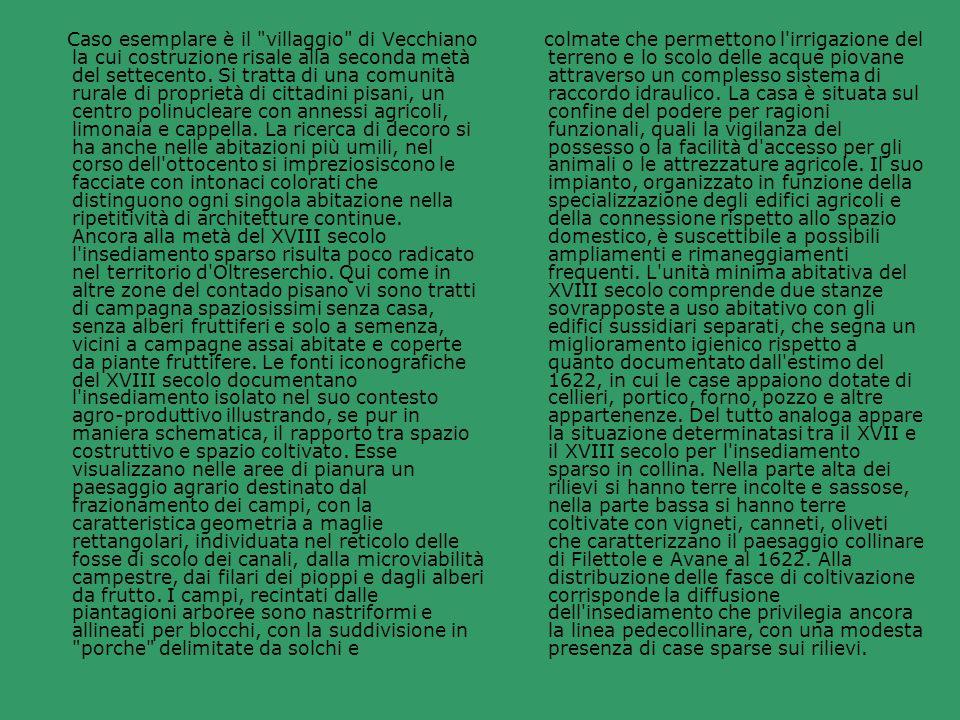 Caso esemplare è il villaggio di Vecchiano la cui costruzione risale alla seconda metà del settecento. Si tratta di una comunità rurale di proprietà di cittadini pisani, un centro polinucleare con annessi agricoli, limonaia e cappella. La ricerca di decoro si ha anche nelle abitazioni più umili, nel corso dell ottocento si impreziosiscono le facciate con intonaci colorati che distinguono ogni singola abitazione nella ripetitività di architetture continue. Ancora alla metà del XVIII secolo l insediamento sparso risulta poco radicato nel territorio d Oltreserchio. Qui come in altre zone del contado pisano vi sono tratti di campagna spaziosissimi senza casa, senza alberi fruttiferi e solo a semenza, vicini a campagne assai abitate e coperte da piante fruttifere. Le fonti iconografiche del XVIII secolo documentano l insediamento isolato nel suo contesto agro-produttivo illustrando, se pur in maniera schematica, il rapporto tra spazio costruttivo e spazio coltivato. Esse visualizzano nelle aree di pianura un paesaggio agrario destinato dal frazionamento dei campi, con la caratteristica geometria a maglie rettangolari, individuata nel reticolo delle fosse di scolo dei canali, dalla microviabilità campestre, dai filari dei pioppi e dagli alberi da frutto. I campi, recintati dalle piantagioni arboree sono nastriformi e allineati per blocchi, con la suddivisione in porche delimitate da solchi e