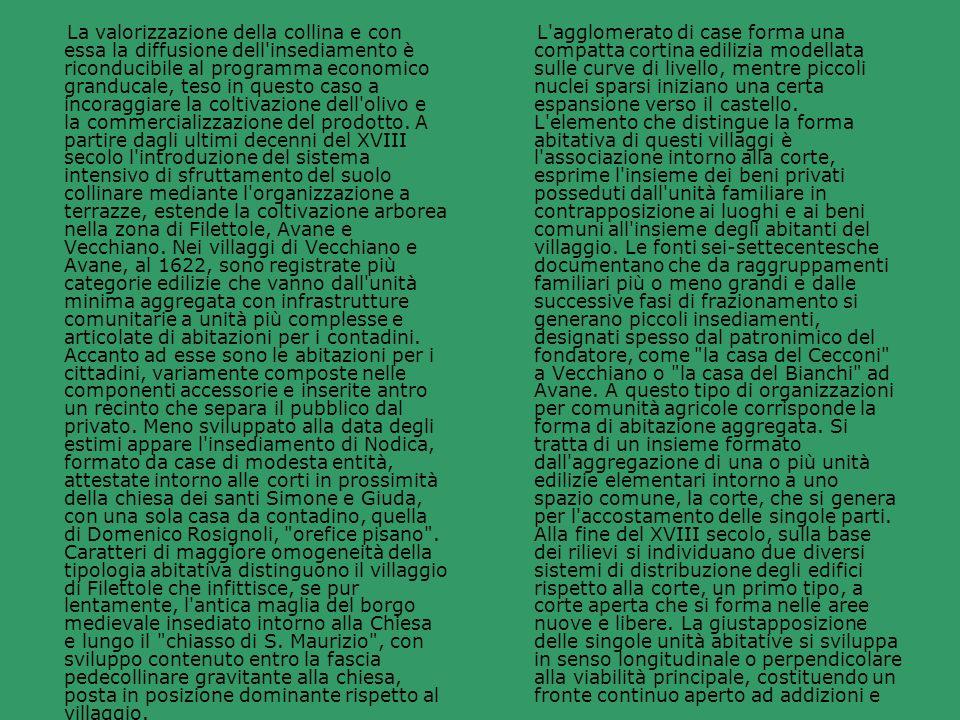La valorizzazione della collina e con essa la diffusione dell insediamento è riconducibile al programma economico granducale, teso in questo caso a incoraggiare la coltivazione dell olivo e la commercializzazione del prodotto. A partire dagli ultimi decenni del XVIII secolo l introduzione del sistema intensivo di sfruttamento del suolo collinare mediante l organizzazione a terrazze, estende la coltivazione arborea nella zona di Filettole, Avane e Vecchiano. Nei villaggi di Vecchiano e Avane, al 1622, sono registrate più categorie edilizie che vanno dall unità minima aggregata con infrastrutture comunitarie a unità più complesse e articolate di abitazioni per i contadini. Accanto ad esse sono le abitazioni per i cittadini, variamente composte nelle componenti accessorie e inserite antro un recinto che separa il pubblico dal privato. Meno sviluppato alla data degli estimi appare l insediamento di Nodica, formato da case di modesta entità, attestate intorno alle corti in prossimità della chiesa dei santi Simone e Giuda, con una sola casa da contadino, quella di Domenico Rosignoli, orefice pisano . Caratteri di maggiore omogeneità della tipologia abitativa distinguono il villaggio di Filettole che infittisce, se pur lentamente, l antica maglia del borgo medievale insediato intorno alla Chiesa e lungo il chiasso di S. Maurizio , con sviluppo contenuto entro la fascia pedecollinare gravitante alla chiesa, posta in posizione dominante rispetto al villaggio.