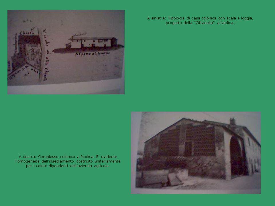 A sinistra: Tipologia di casa colonica con scala e loggia, progetto della Cittadella a Nodica.
