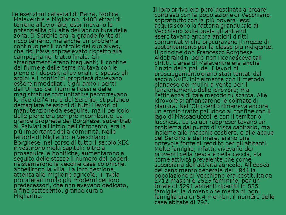 Il loro arrivo era però destinato a creare contrasti con la popolazione di Vecchiano, soprattutto con la più povera: essi acquisiscono la fattoria granducale di Vecchiano,sulla quale gli abitanti esercitavano ancora antichi diritti comunitativi che procuravano il mezzo di sostentamento per la classe più indigente. Il principe don Francesco Borghese Aldobrandini però non riconosceva tali diritti. L area di Malaventre era anche l inizio della palude. I lavori di prosciugamento erano stati tentati dal secolo XVII, inizialmente con il metodo olandese dei mulini a vento per il funzionamento delle idrovore; ma l efficienza di tale metodo fu scarsa. Alle idrovore si affiancarono le colmate di pianura. Nell Ottocento rimaneva ancora un ampio tratto paludoso al confine con il lago di Massaciuccoli e con il territorio lucchese. Le paludi rappresentavano un problema dal punto di vista sanitario, ma insieme alle macchie costiere, e alle acque del Serchio e del mare, erano una notevole fonte di reddito per gli abitanti. Molte famiglie, infatti, vivevano dei proventi della pesca e della caccia, sia come attività prevalente che come sussidiaria dell attività agricola. All epoca del censimento generale del 1841 la popolazione di Vecchiano era costituita da 2712 maschi e 2525 femmine, per un totale di 5291 abitanti ripartiti in 825 famiglie; la dimensione media di ogni famiglia era di 6.4 membri, il numero delle case abitate di 792.