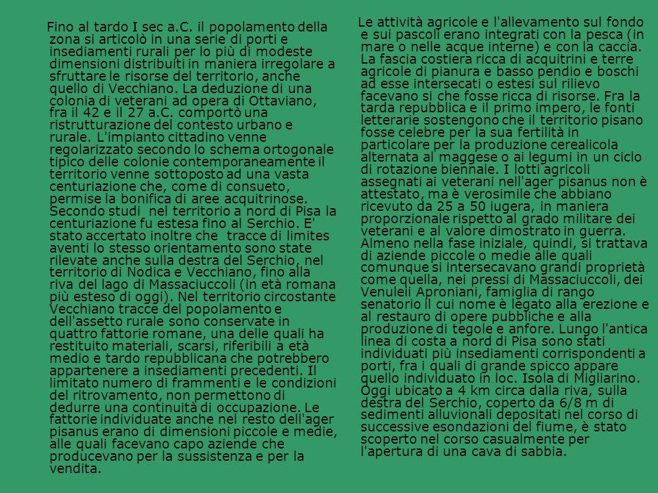Le attività agricole e l allevamento sul fondo e sui pascoli erano integrati con la pesca (in mare o nelle acque interne) e con la caccia. La fascia costiera ricca di acquitrini e terre agricole di pianura e basso pendio e boschi ad esse intersecati o estesi sul rilievo facevano si che fosse ricca di risorse. Fra la tarda repubblica e il primo impero, le fonti letterarie sostengono che il territorio pisano fosse celebre per la sua fertilità in particolare per la produzione cerealicola alternata al maggese o ai legumi in un ciclo di rotazione biennale. I lotti agricoli assegnati ai veterani nell ager pisanus non è attestato, ma è verosimile che abbiano ricevuto da 25 a 50 iugera, in maniera proporzionale rispetto al grado militare dei veterani e al valore dimostrato in guerra. Almeno nella fase iniziale, quindi, si trattava di aziende piccole o medie alle quali comunque si intersecavano grandi proprietà come quella, nei pressi di Massaciuccoli, dei Venuleii Aproniani, famiglia di rango senatorio il cui nome è legato alla erezione e al restauro di opere pubbliche e alla produzione di tegole e anfore. Lungo l antica linea di costa a nord di Pisa sono stati individuati più insediamenti corrispondenti a porti, fra i quali di grande spicco appare quello individuato in loc. Isola di Migliarino. Oggi ubicato a 4 km circa dalla riva, sulla destra del Serchio, coperto da 6/8 m di sedimenti alluvionali depositati nel corso di successive esondazioni del fiume, è stato scoperto nel corso casualmente per l apertura di una cava di sabbia.