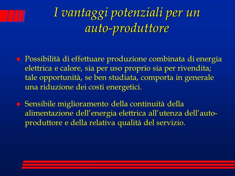 I vantaggi potenziali per un auto-produttore