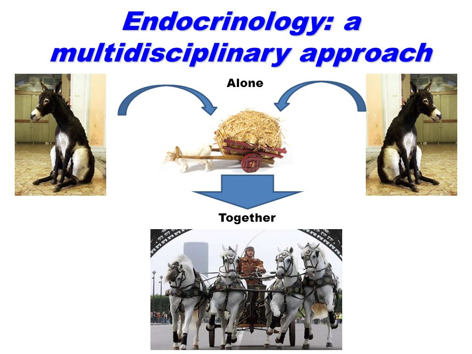 Endocrinology: a multidisciplinary approach