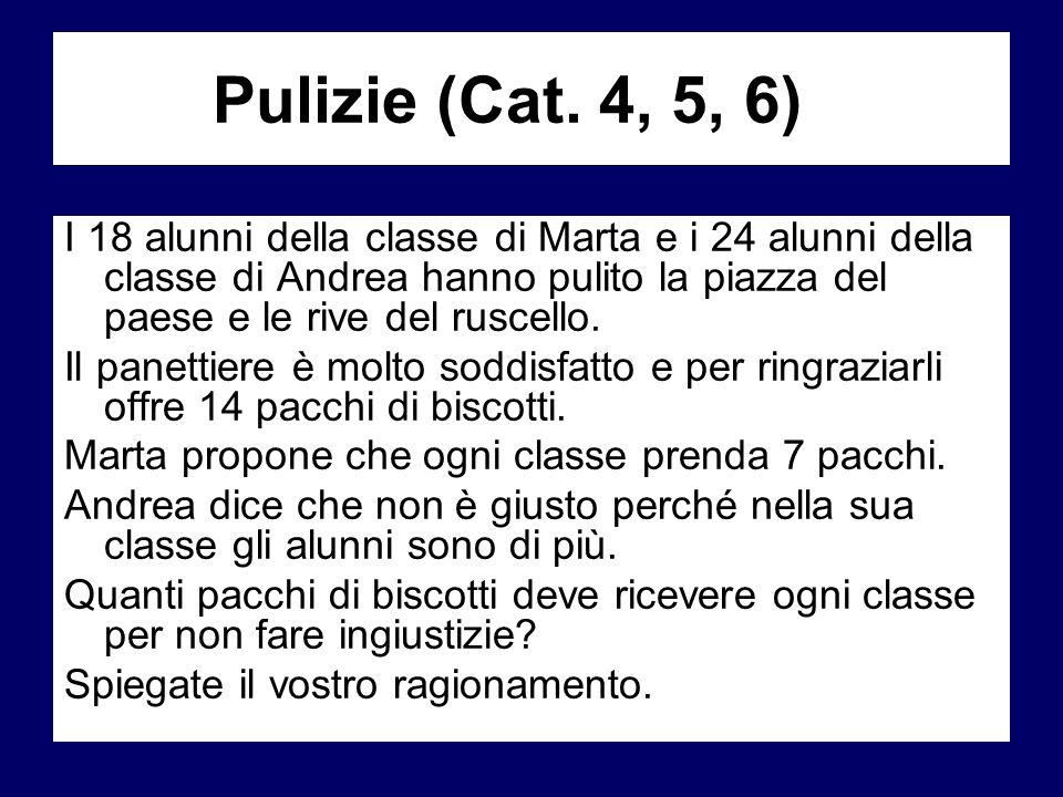 Pulizie (Cat. 4, 5, 6)