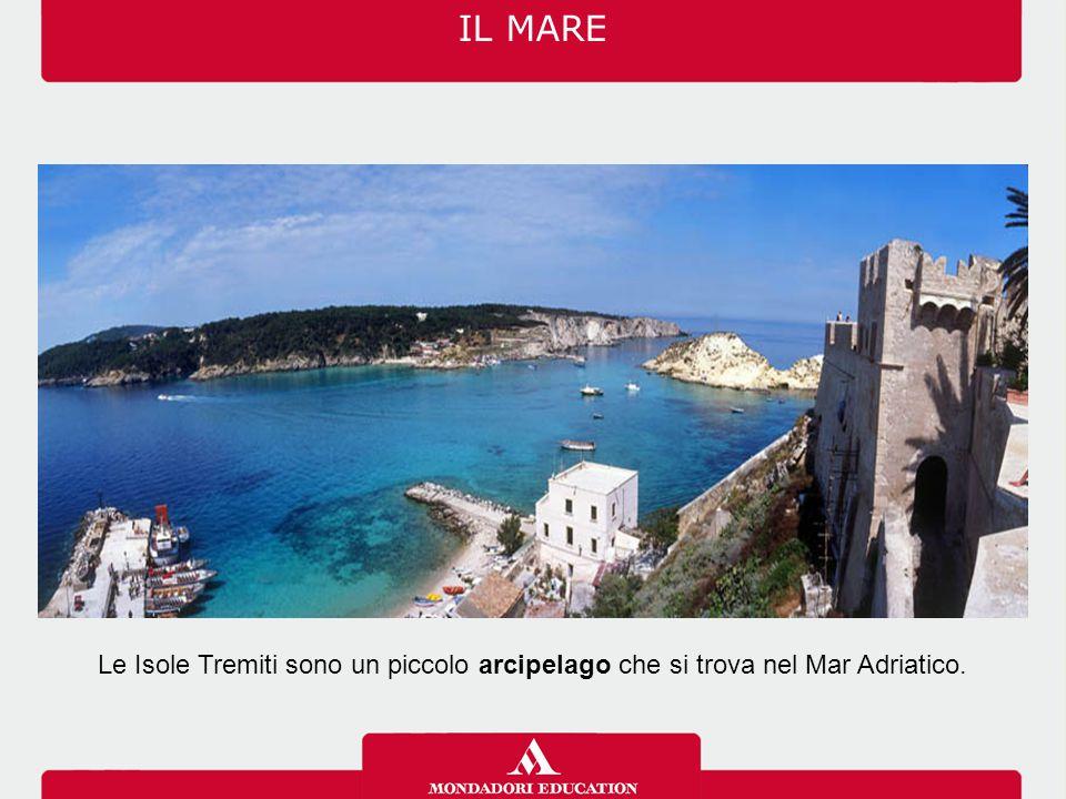 IL MARE Le Isole Tremiti sono un piccolo arcipelago che si trova nel Mar Adriatico.