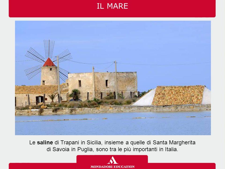 IL MARE Le saline di Trapani in Sicilia, insieme a quelle di Santa Margherita.