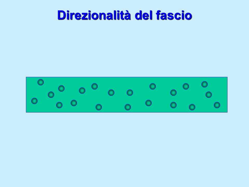 Direzionalità del fascio