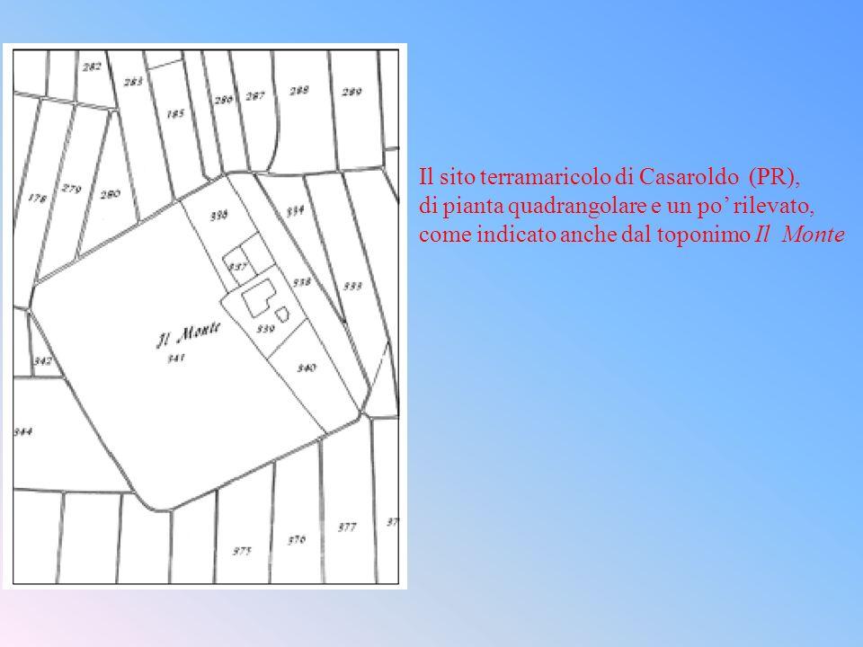 Il sito terramaricolo di Casaroldo (PR),