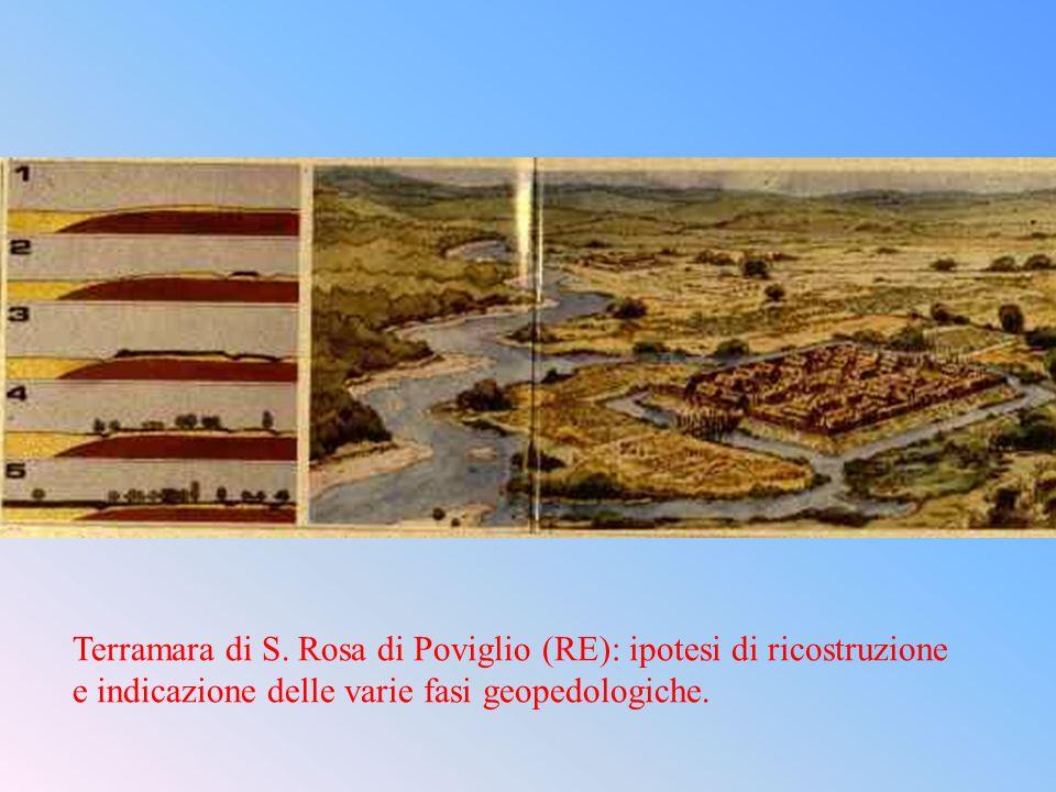 Terramara di S. Rosa di Poviglio (RE): ipotesi di ricostruzione