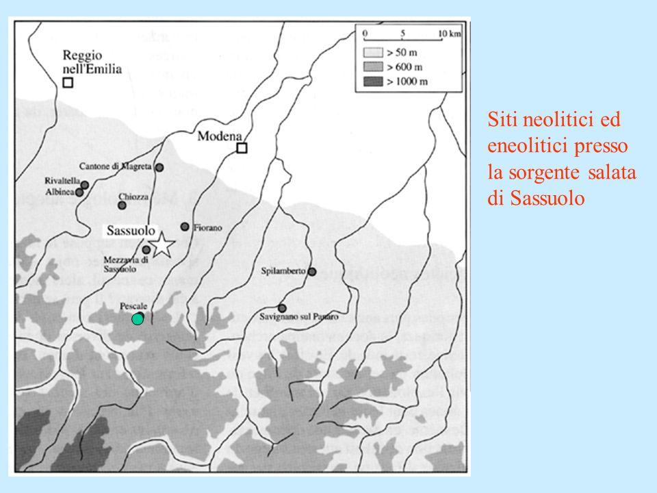 Siti neolitici ed eneolitici presso la sorgente salata di Sassuolo