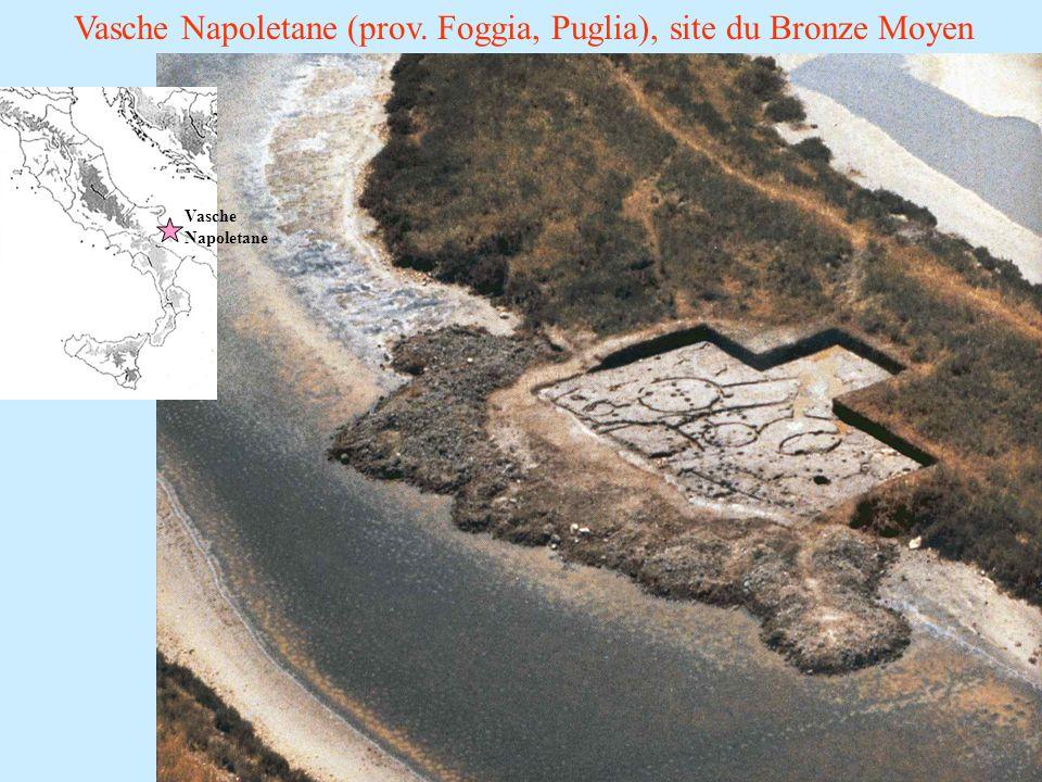 Vasche Napoletane (prov. Foggia, Puglia), site du Bronze Moyen