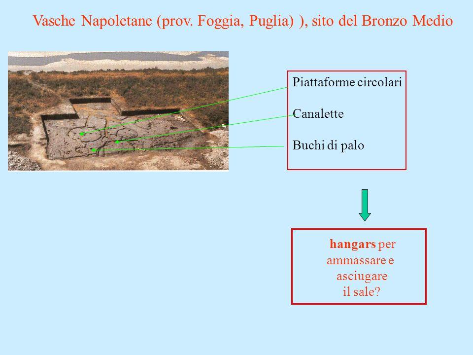 Vasche Napoletane (prov. Foggia, Puglia) ), sito del Bronzo Medio