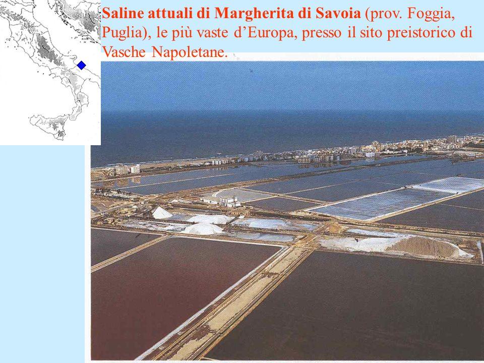 Saline attuali di Margherita di Savoia (prov