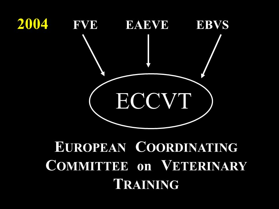 EUROPEAN COORDINATING COMMITTEE on VETERINARY TRAINING