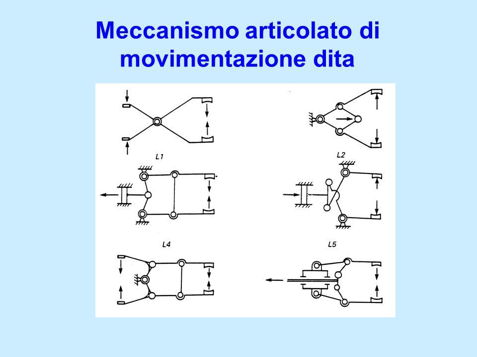 Meccanismo articolato di movimentazione dita