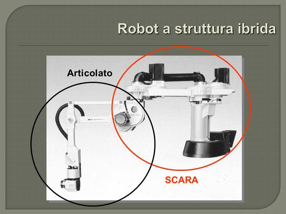Robot a struttura ibrida