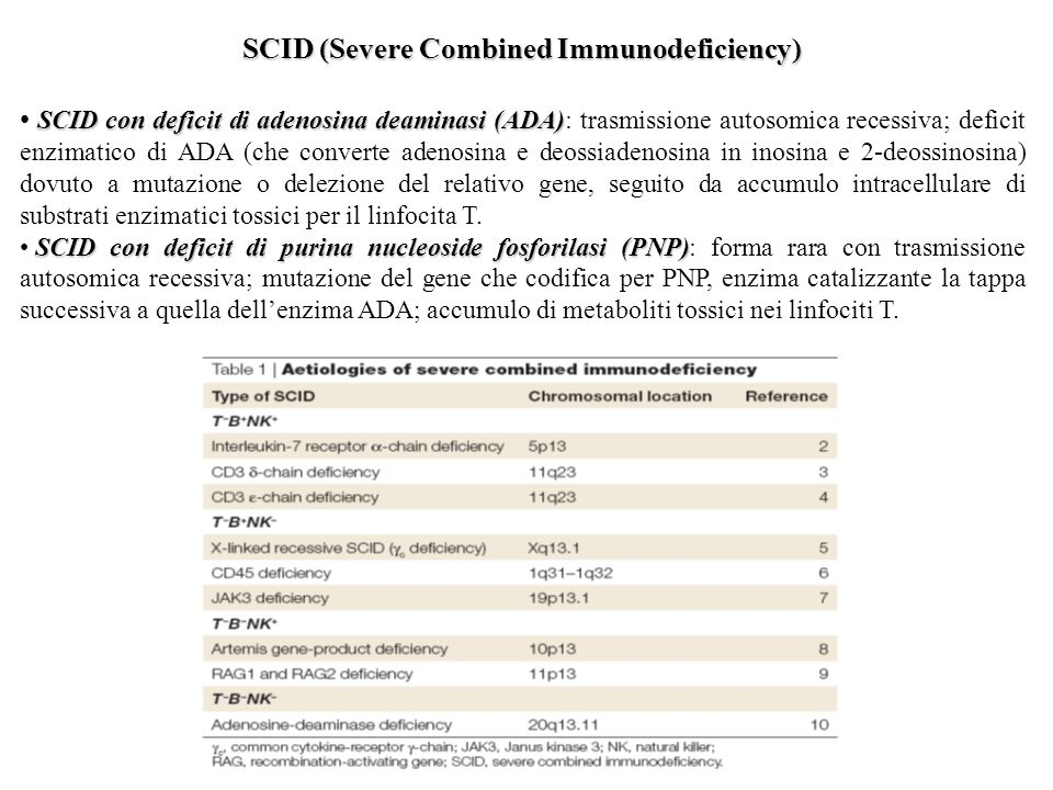 SCID (Severe Combined Immunodeficiency)