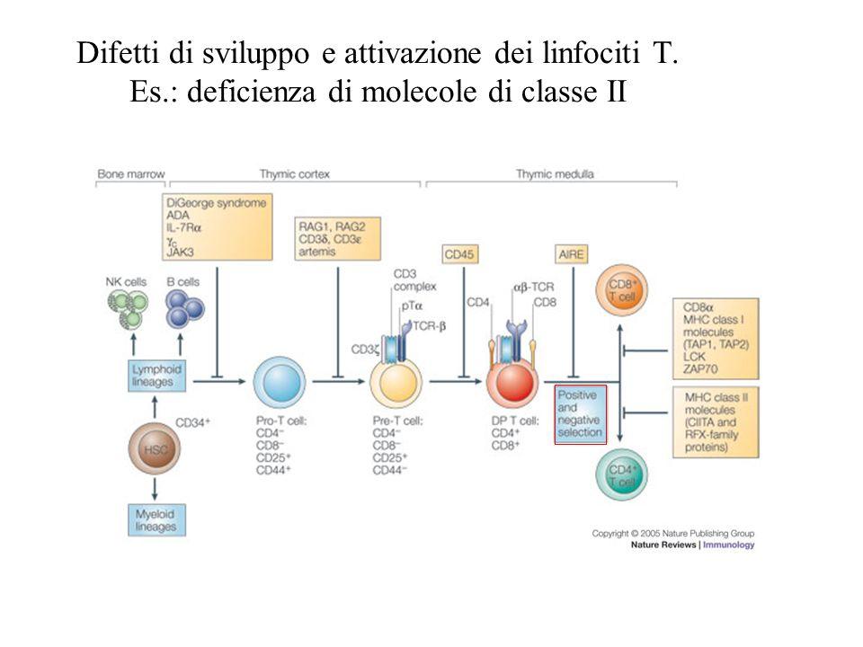 Difetti di sviluppo e attivazione dei linfociti T. Es