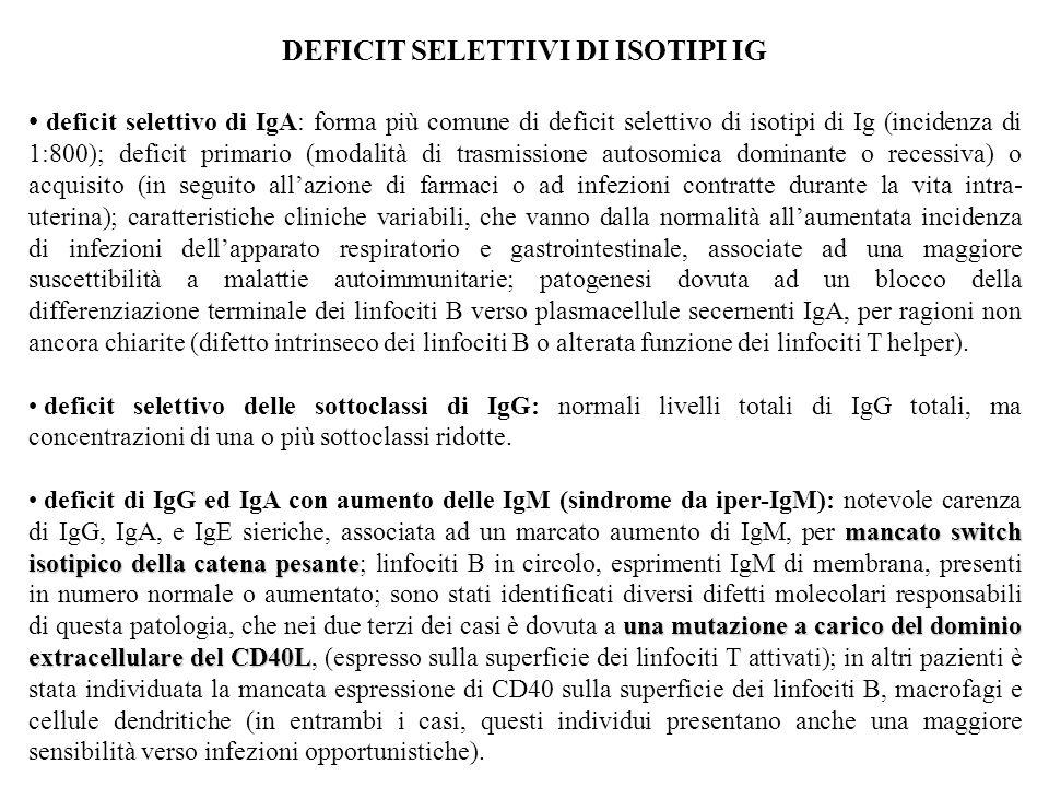 DEFICIT SELETTIVI DI ISOTIPI IG