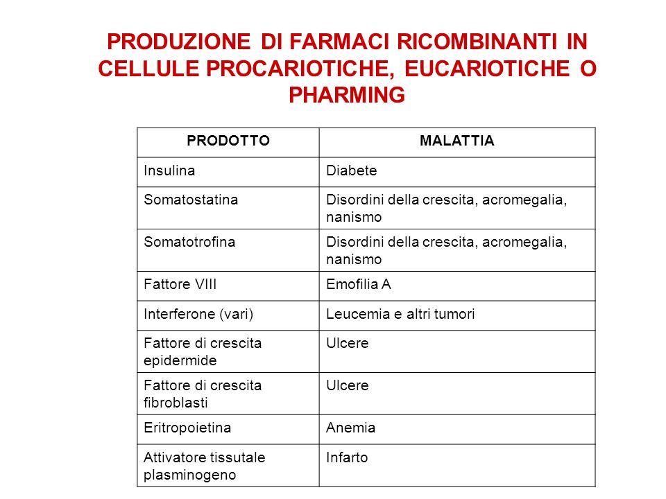 PRODUZIONE DI FARMACI RICOMBINANTI IN CELLULE PROCARIOTICHE, EUCARIOTICHE O PHARMING