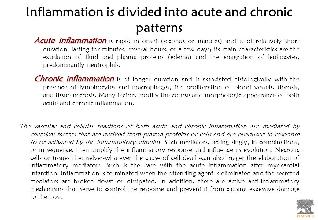 Inflammation is divided into acute and chronic patterns