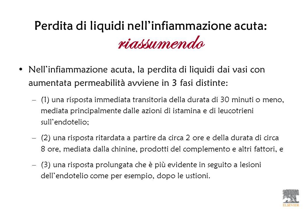 Perdita di liquidi nell'infiammazione acuta: