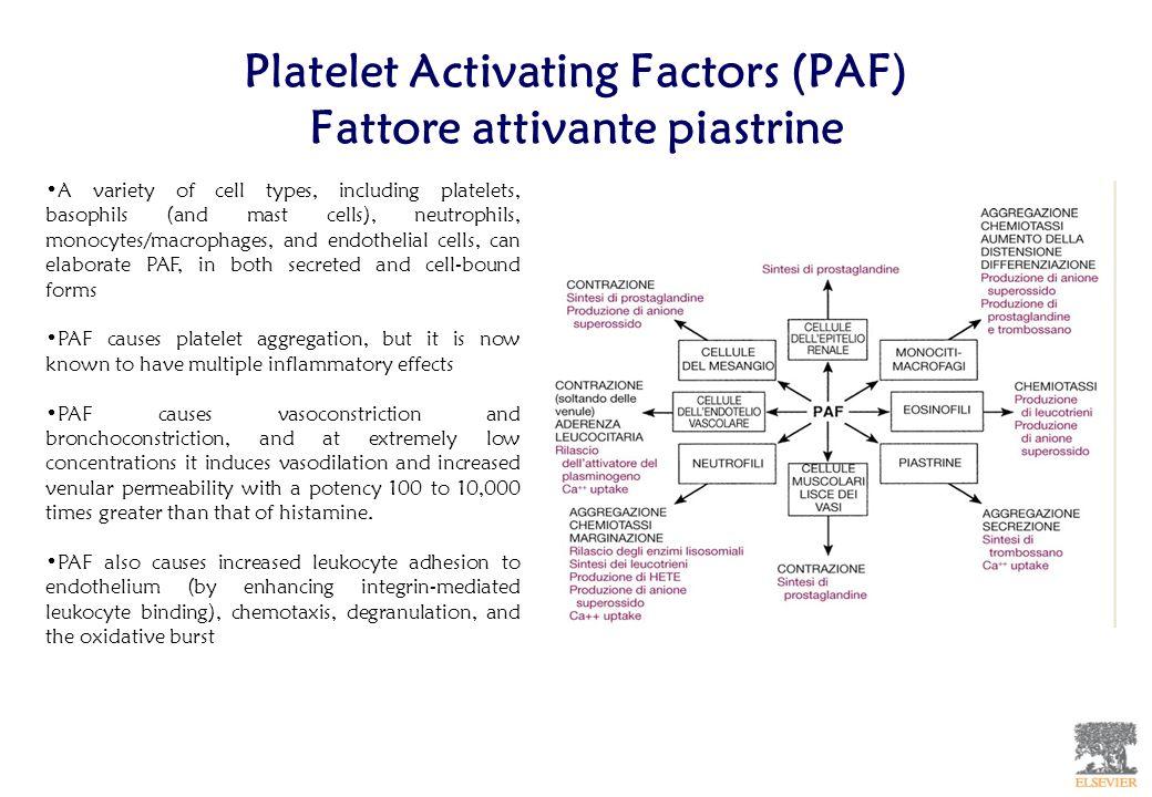 Platelet Activating Factors (PAF) Fattore attivante piastrine
