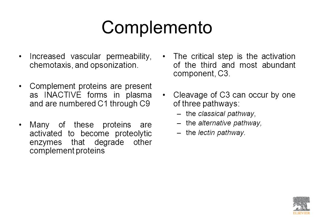 Complemento Increased vascular permeability, chemotaxis, and opsonization.