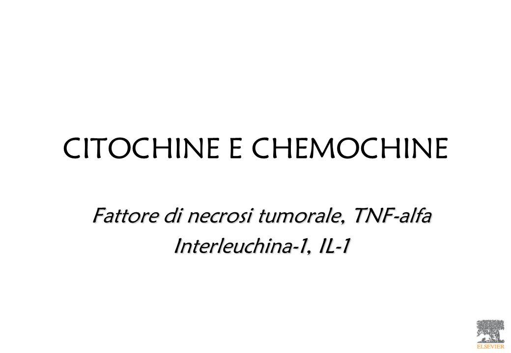 CITOCHINE E CHEMOCHINE