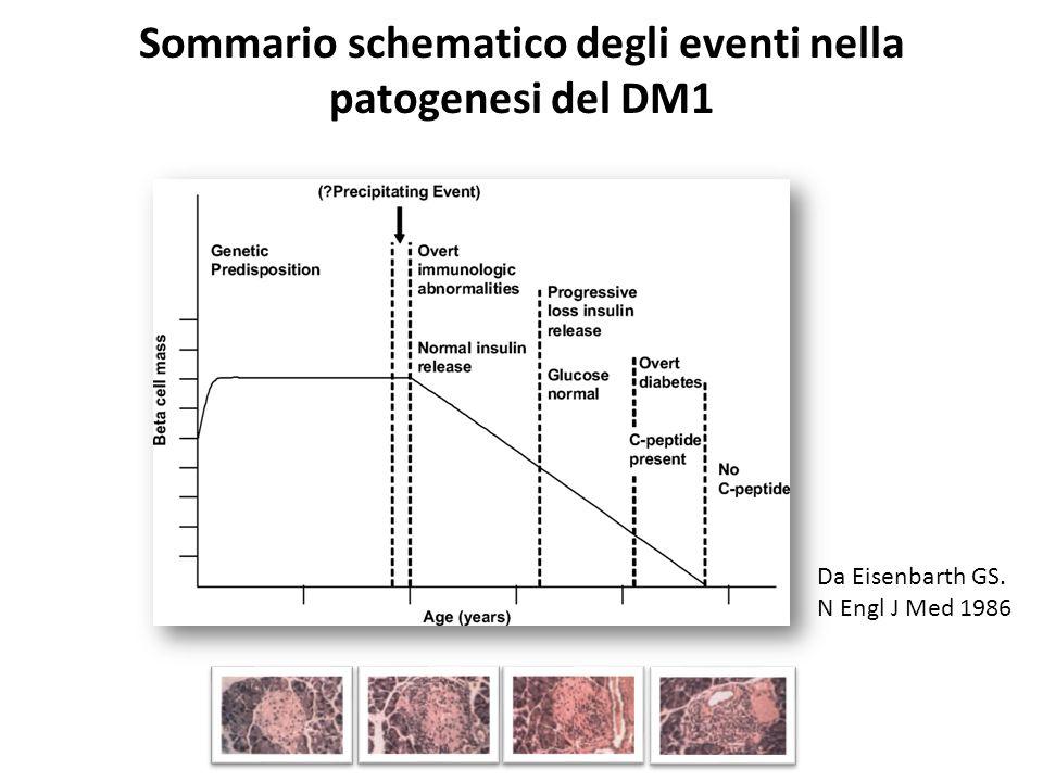 Sommario schematico degli eventi nella patogenesi del DM1
