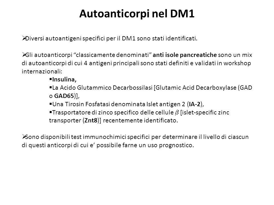 Autoanticorpi nel DM1Diversi autoantigeni specifici per il DM1 sono stati identificati.