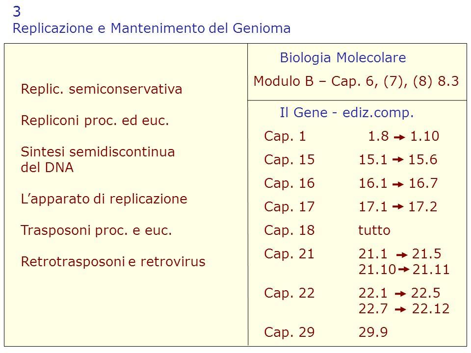 3 Replicazione e Mantenimento del Genioma Biologia Molecolare