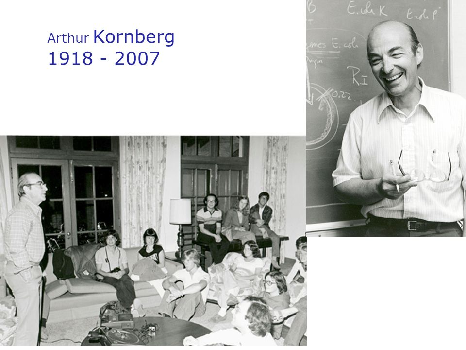 Arthur Kornberg 1918 - 2007