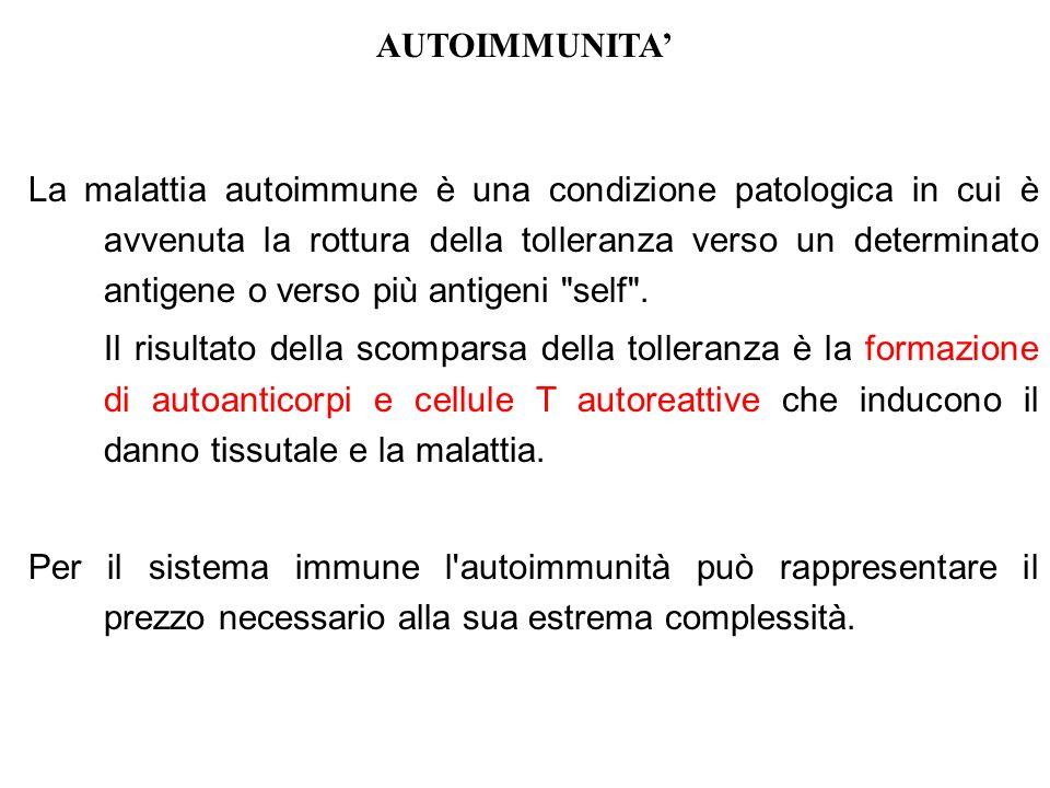AUTOIMMUNITA'