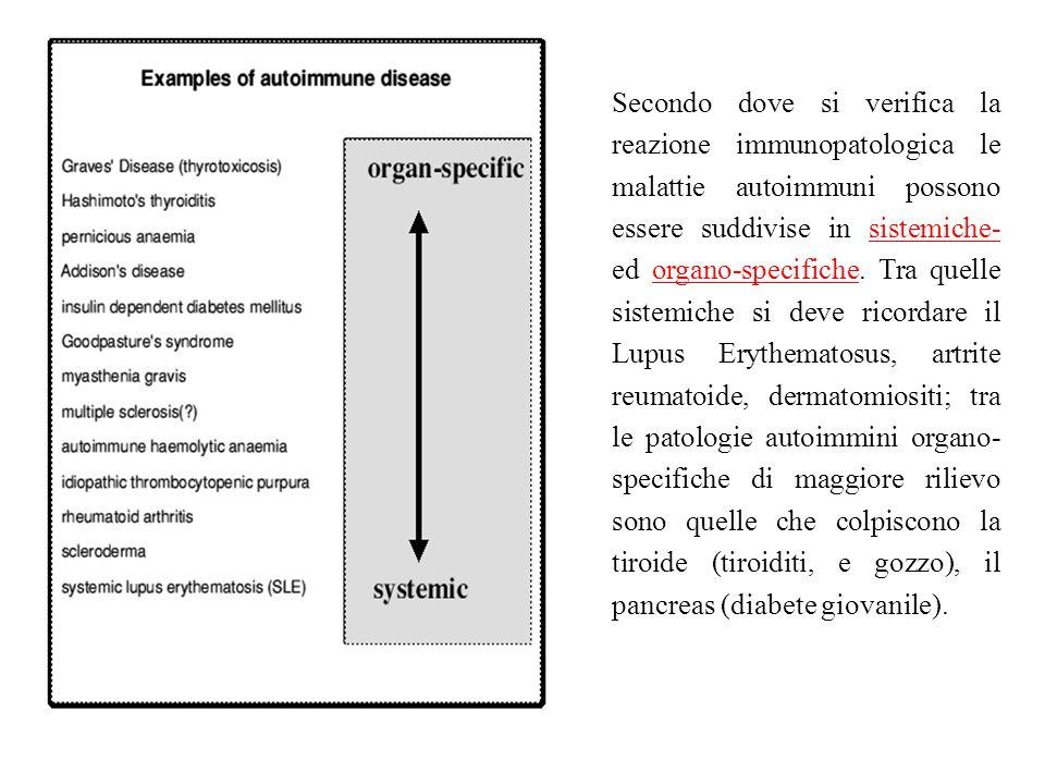 Secondo dove si verifica la reazione immunopatologica le malattie autoimmuni possono essere suddivise in sistemiche- ed organo-specifiche.