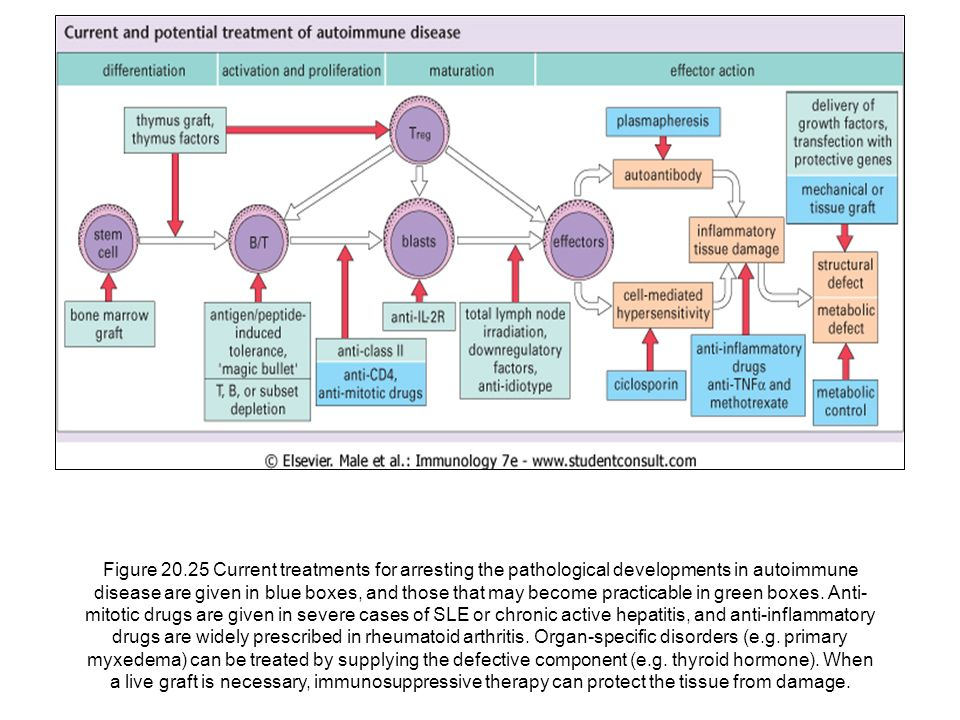 Figure 20.25 Current treatments for arresting the pathological developments in autoimmune disease are given in blue boxes, and those that may become practicable in green boxes.